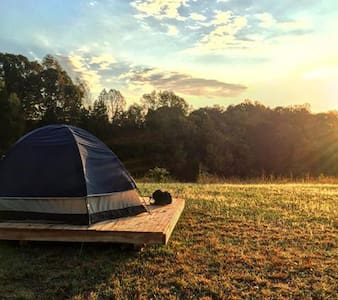 Camping platform at Cane Creek Farm in Saxapahaw - Tent