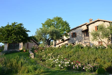 B&B Tre Fanciulli (Calendula) - Massa Martana - Bed & Breakfast