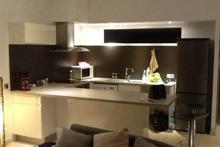 appartement duplex 80m²