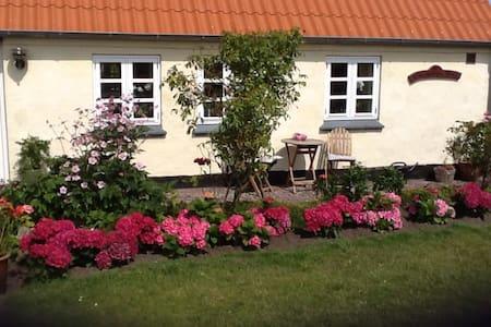 Min Farmors Hus På Samsø - Cabana