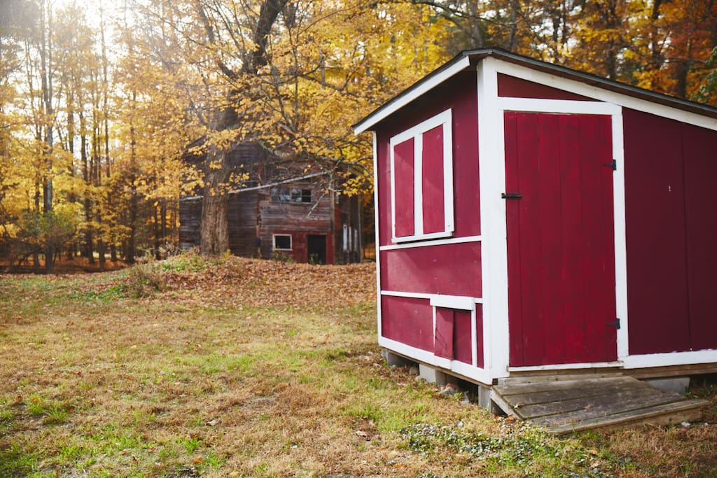 Barn and Chicken Coop (No Chickens on Property)