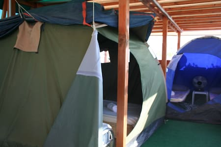 Room type: Private room Property type: Tent Accommodates: 2 Bedrooms: 1 Bathrooms: 1