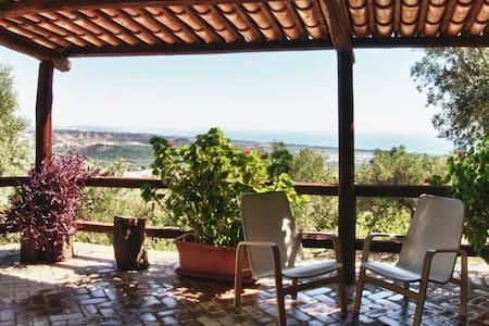 Oliveta: tra olivi e mare sul golfo di Squillace - Copanello