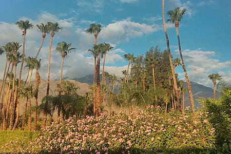 Palm Springs Sunny Serene Views