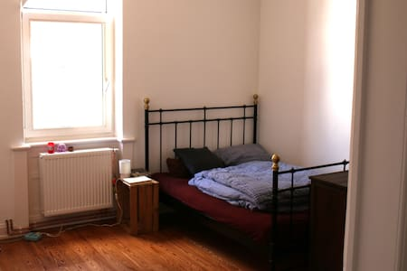 1 Room Aschaffenburg (close to main station) - Aschaffenburg