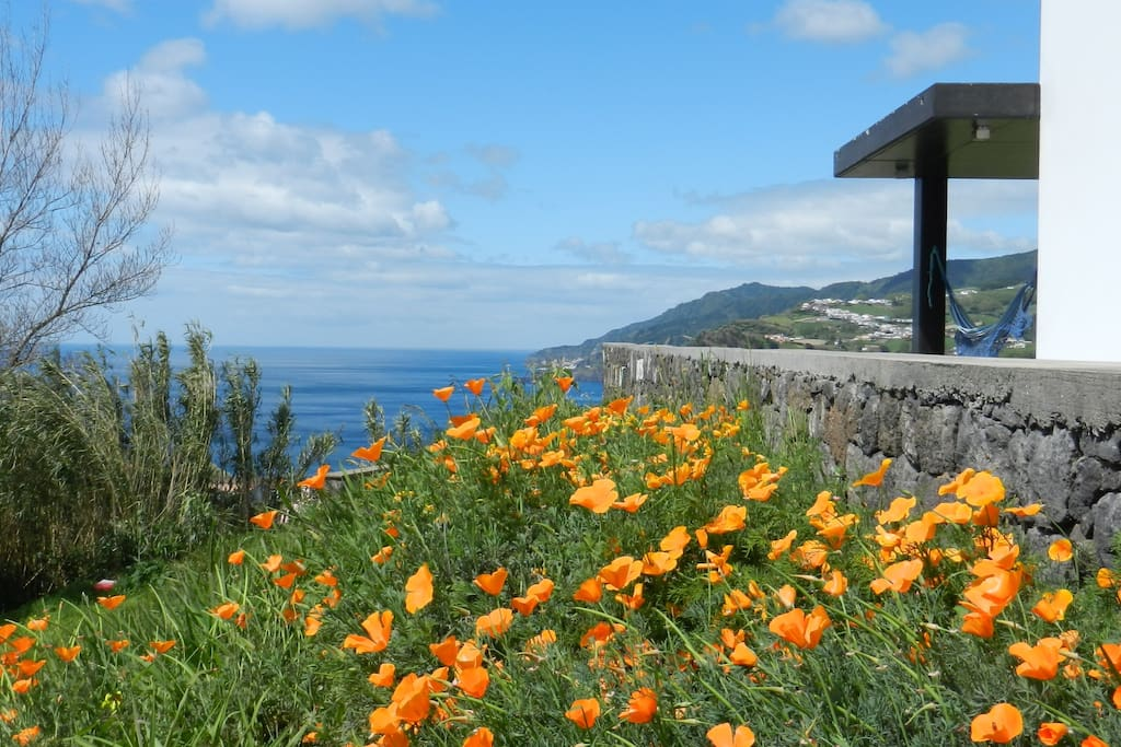 What about some sunny days in The Azores?
