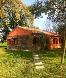 Chalet in pietra - Correzzola - Hus