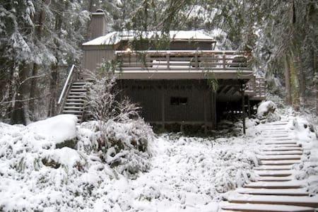 Cozy Mount Baker snowline cabin - Glacier - House