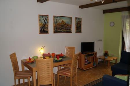 Apartment, Altachweg, Saalbach - Lakás