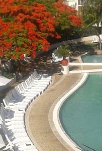 Spectacular CALYPSO resorts c ama