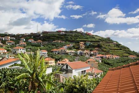 LowCost - Eco Banana House - Ponta Do Sol