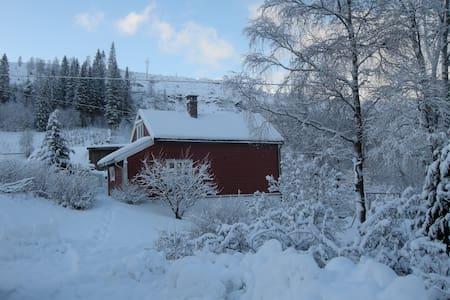 Old farmers cottage, Skjerping farm - Casa