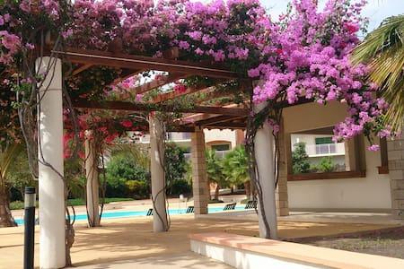 Peaceful Lux 2 Bed/2 Bath Apt, Pool/Garden Views - Santa Maria