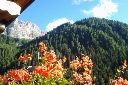 Dolomite Le Palue bnb in Marmolada - Bed & Breakfast