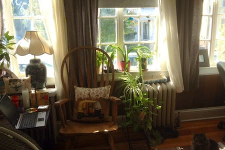 A private room in a charming house - Providence - House