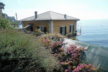La Vela Gialla - Camogli, Punta Chiappa - Camogli - Villa