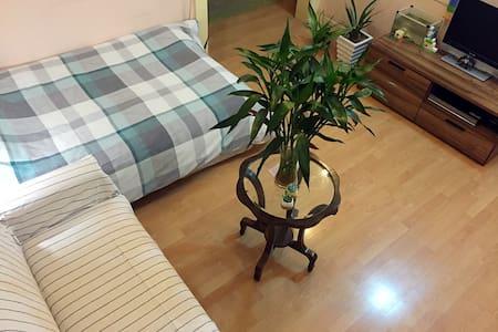 鸟巢边温馨客厅大单人 - Beijing - Apartment