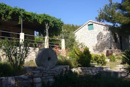 House Mirta - Maslinica - Haus