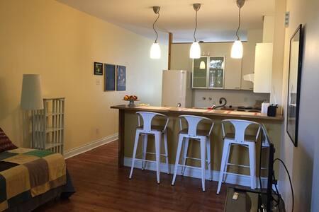 Charmant logement ensoleillé - Montréal - Apartment