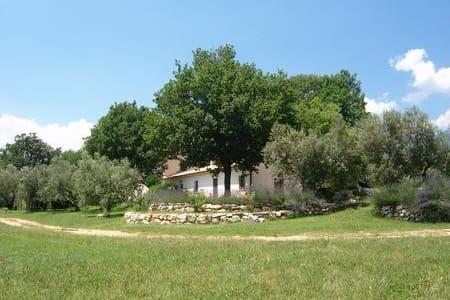 Relax e passeggiate tra gli olivi!! - Balsorano Nuovo - Wohnung