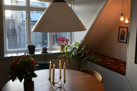 Cozy rooftop flat in central Cph