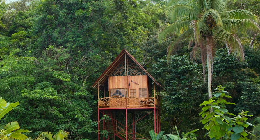 Rainforest Tree House w Hot Springs - Casa sull'albero