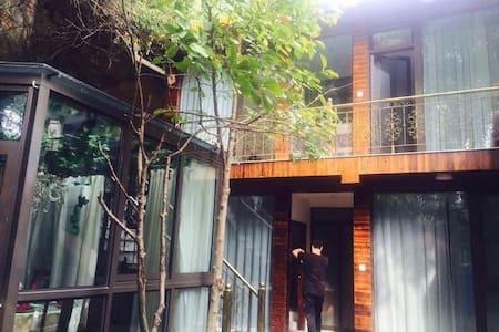 青瓷秋千别院古色古香雪拉同艺术私人住宅 - Hangzhou - Huis