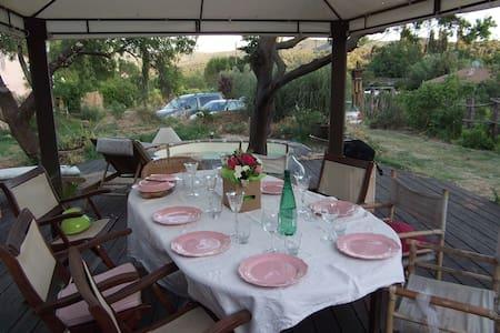 Au milieu des vignes - Carnoules - House