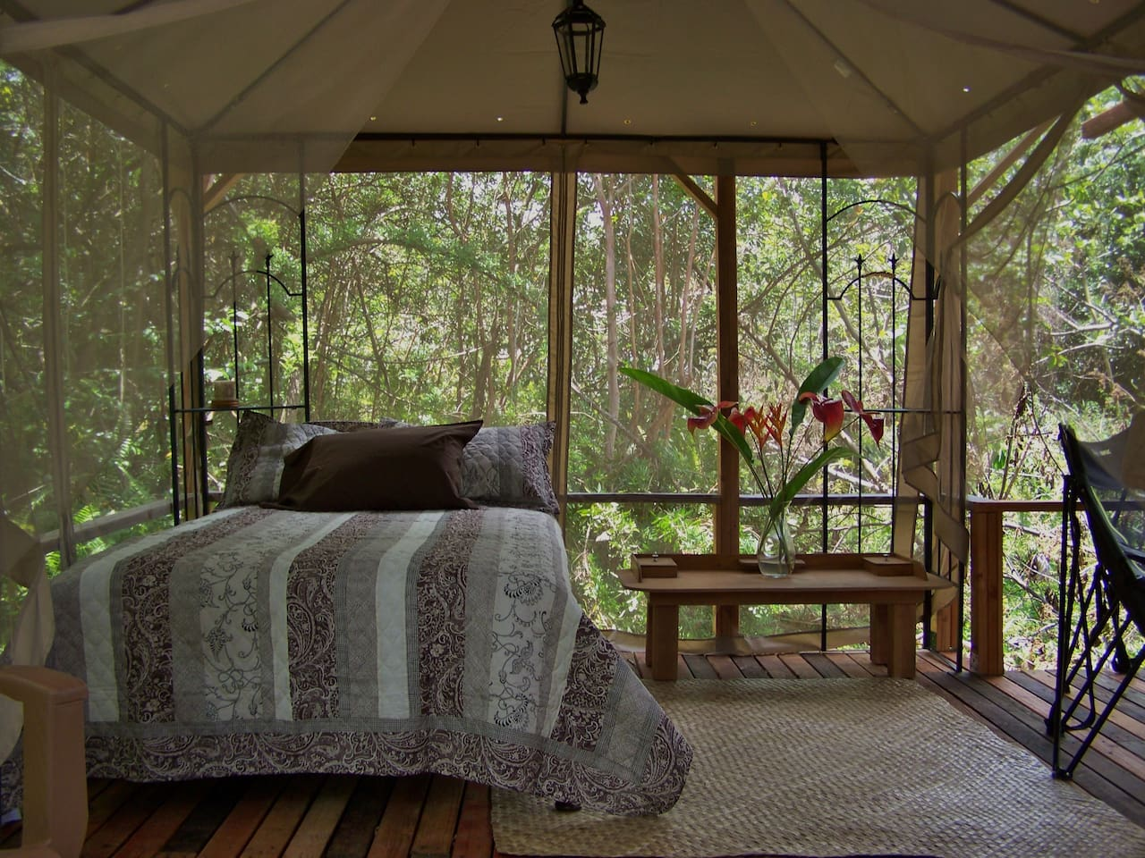 Relax in this tranquil setting at the Dragonfly.