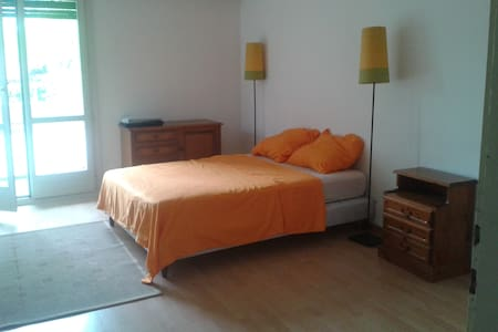 Large double room with possible extra beds - Bern - Apartment