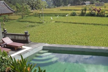 Fan Room @Ala's Green Lagoon Ubud 2 - Ubud - Bed & Breakfast