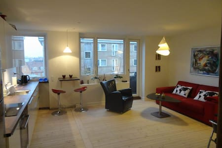 Nice flat, 20 mins from CPH centre