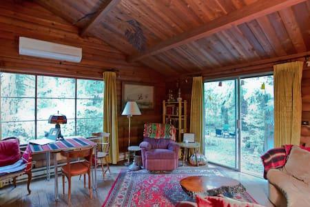 Woodsy Dream has Hot Tub & WIFI! - Rhododendron - Blockhütte