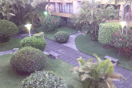 A quiet place in the busy city - Guatemala City - Apartment