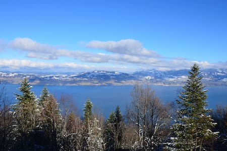 Chalet vue exceptionnelle sur le Lac Léman - Thollon-les-Mémises - Chalet
