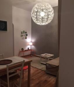 STUDIO MEUBLE CENTRE HISTORIQUE - Pau - Apartment