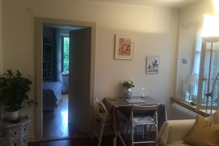 Lovely and cosy one bedroom flat in Old Carouge - Apartment