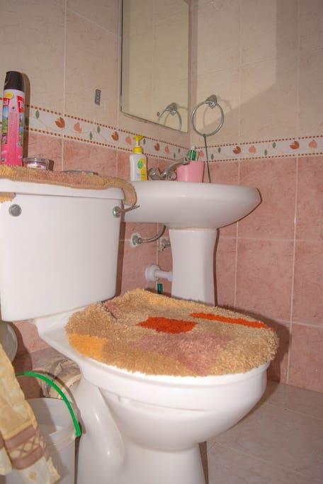 Ensuite Bath and WC - Bedroom No.1
