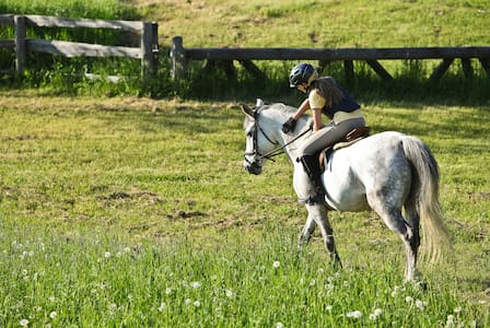 Country Hill Farm Equestrian Vacations - Whitchurch-Stouffville