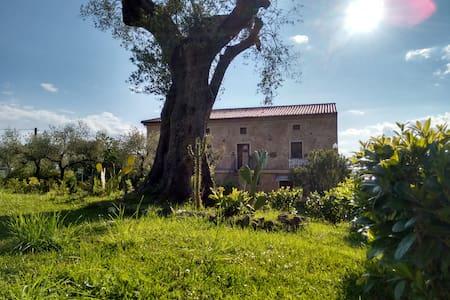 Affittacamere a Vallo della Lucania e nel Cilento - Vallo della Lucania - Bed & Breakfast
