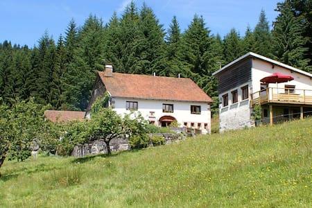 Maison en lisière de fôret, Hautes Vosges - Maison