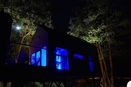 Dzięcioł - domek w gałęziach drzew - Wlodawa - Casa en un árbol