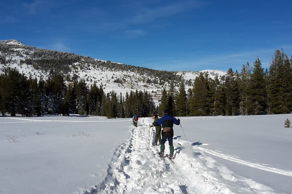 Mt Rose meadow x-country skiing...6 miles from house