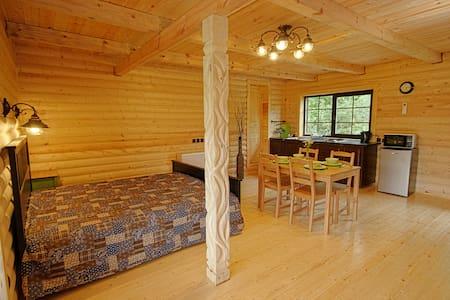 Дом на Тригорской, номер 1Б - Rumah Tamu
