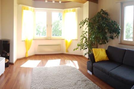 Helle freundliche 3.5 Zi-Wohnung in Wettingen - Apartment