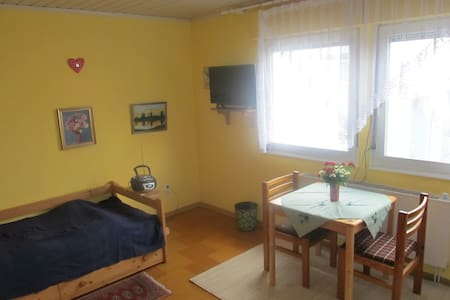 A friendly 25 m² room with a nice host - Griesheim