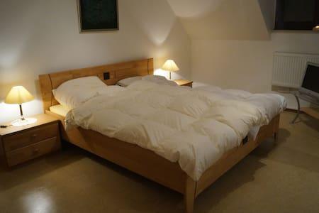 Ruhrpott 1 Essen Mitte HBF ganz nah - Wohnung