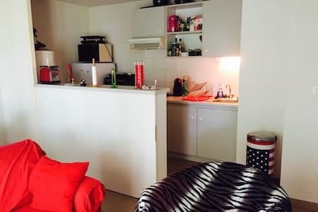 Bel appartement calme de 47m2 tout équipé - Apartment