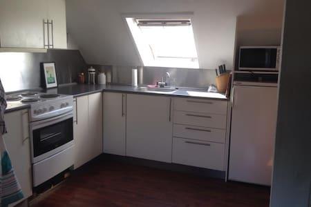 Hyggelig lejlighed med placering nær centrum - Odense - Apartment