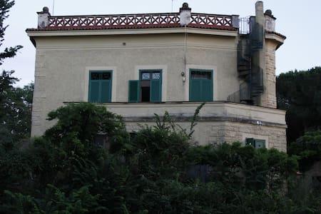 ROOM IN A  19th  CENTURY VILLA - Marino